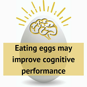 Eating eggs may improve cognitive performance image